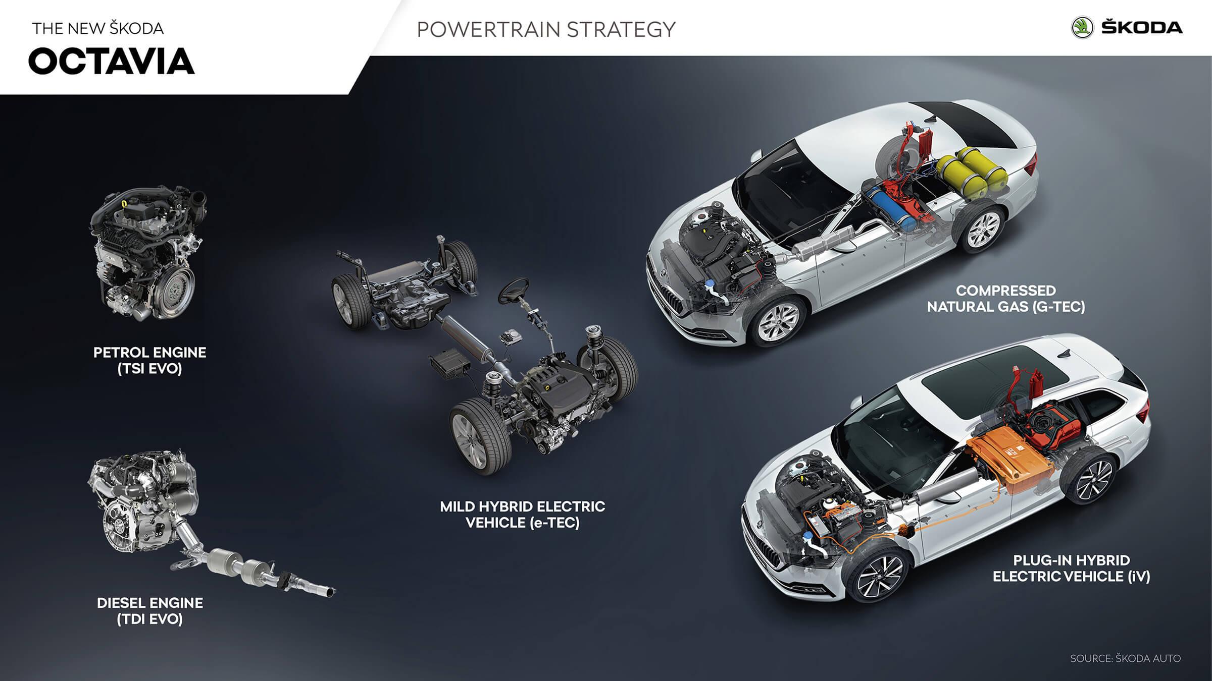 Skoda Octavia powertrain strategy